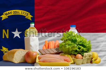complete waved flag of american state of north carolina for back Stock photo © vepar5