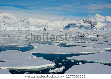 Ice Floe Stock photo © derocz