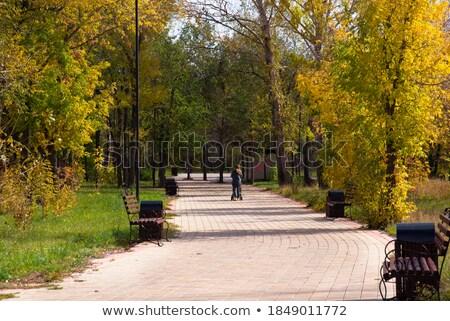 Kobieta wózki dla dzieci chodzić jesienny aleja rodziny Zdjęcia stock © phbcz