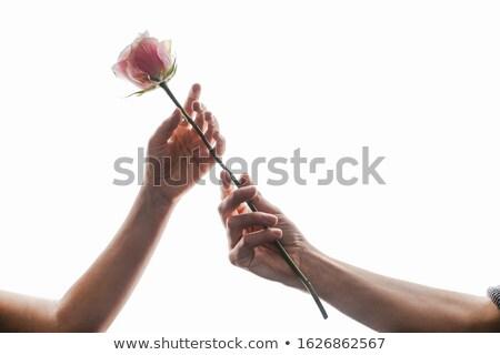 Mulher pétalas de rosa feminino mão completo Foto stock © compuinfoto