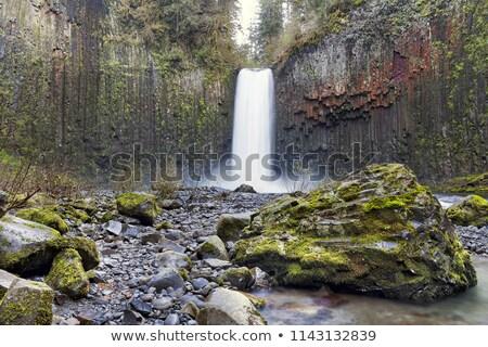 Torrente primavera stagione Oregon primavera natura Foto d'archivio © davidgn