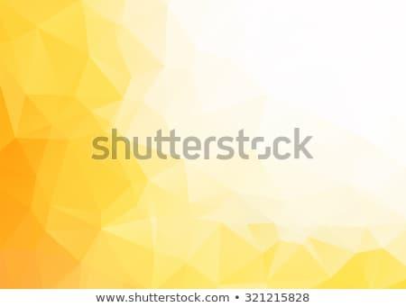 Abstract Geel mozaiek meetkundig illustratie vector Stockfoto © derocz