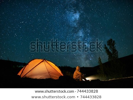 Landscape under the Milky way. Stock photo © maxmitzu