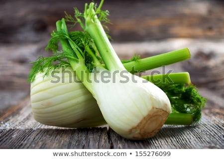 bulbs of fresh fennel Stock photo © Digifoodstock