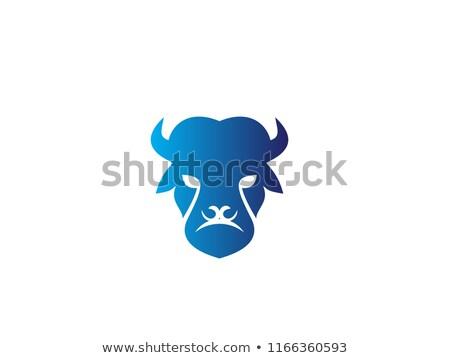 American Bison Head Sports Mascot Stock photo © patrimonio