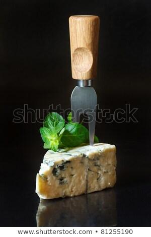 cunha · queijo · branco · comida · leite - foto stock © alex9500