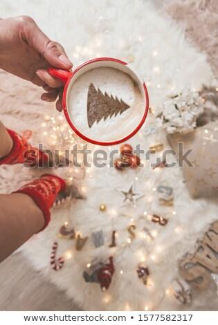 Noel süsler peri ışıklar süslemeleri Stok fotoğraf © lovleah