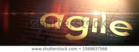 ágil macro foto ouro slogan desenvolvimento Foto stock © tashatuvango