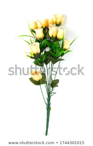 artificiale · rose · lama · colla · fiori · ragazza - foto d'archivio © koratmember