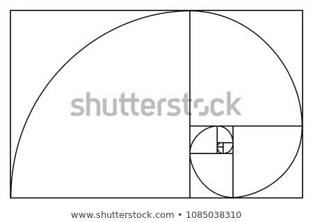 Golden ratio proportions black scheme on white Stock photo © evgeny89