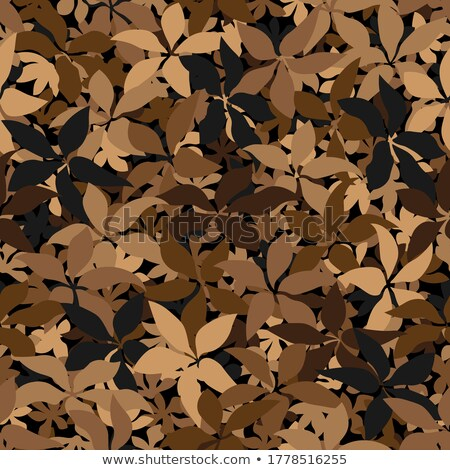 abstract · natuur · najaar · symbool · ontwerp · frame - stockfoto © orson