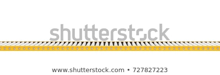 Transporter belt Stock photo © alex_l