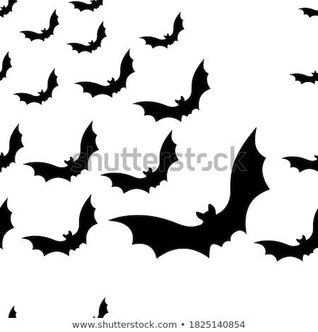 morcego · design · clip · arte · vetor · rosto - foto stock © indiwarm