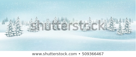 abstract · winterlandschap · tak · Rood · rijp · bessen - stockfoto © artush