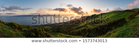hilly panoramic view at the Azores Stock photo © prill