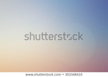 яркий морем закат пастельный Nice цветами Сток-фото © kaycee