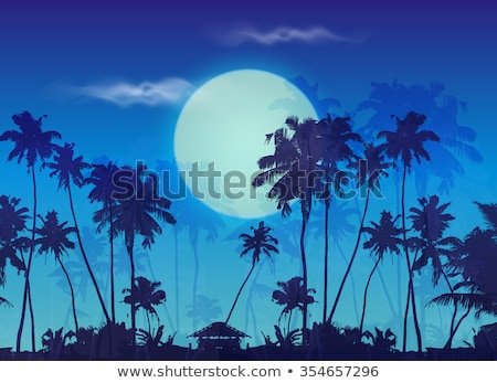 Silhouette coco arbres coucher du soleil piscine plage Photo stock © urbanangel