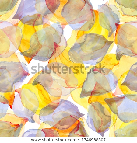 White wildflowers, artistic grunge background stock photo © Julietphotography