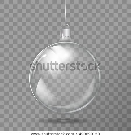 zilver · kerstboom · decoratie · sneeuw · echt · buitenshuis - stockfoto © rob_stark