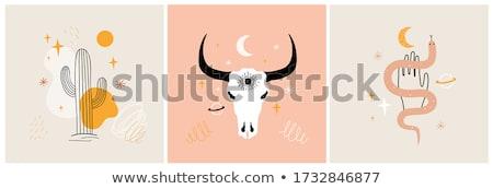 смешные западной корова Сток-фото © pcanzo