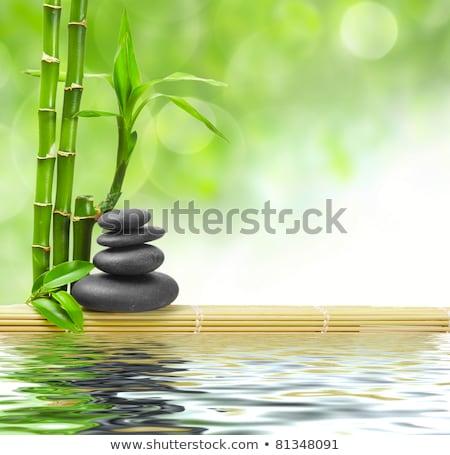 Siyah zen taşlar bambu bitki Stok fotoğraf © calvste
