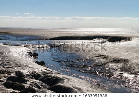 Wadden Sea Stock photo © Arrxxx