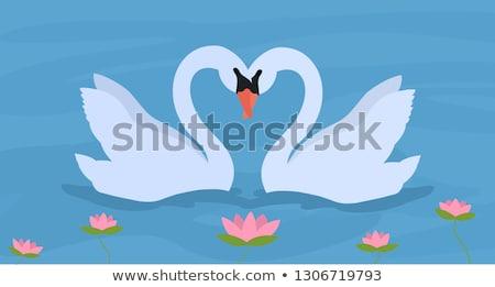 miłości · dwa · piękna · biały · szczęśliwy · para - zdjęcia stock © lenapix