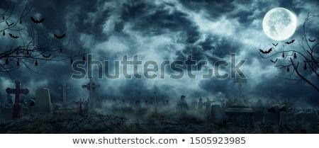 Halloween buli madárijesztő tökök égbolt fa Stock fotó © WaD
