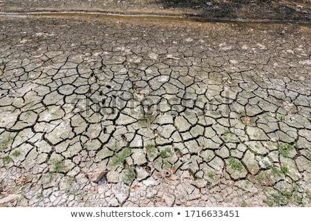 seca · terra · rachado · lago · textura · abstrato - foto stock © kawing921