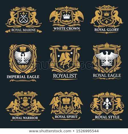 Black gothic shield emblem Stock photo © mikemcd