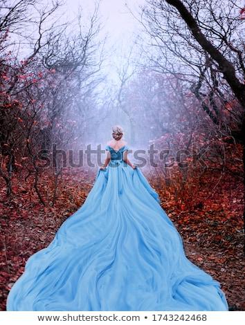Longtemps robe belle jeune femme rouge modèle Photo stock © choreograph