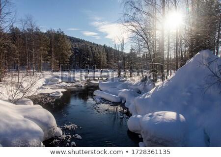 лыжных · заморожены · озеро · солнце · снега · мужчин - Сток-фото © anterovium