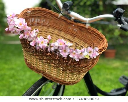 bisiklet · çiçekler · kırmızı · bağbozumu · bisiklet · sepet - stok fotoğraf © juniart