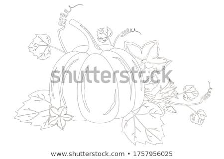 hojas · de · otoño · colorido · brillante · fondo · naranja · rojo - foto stock © jonnysek