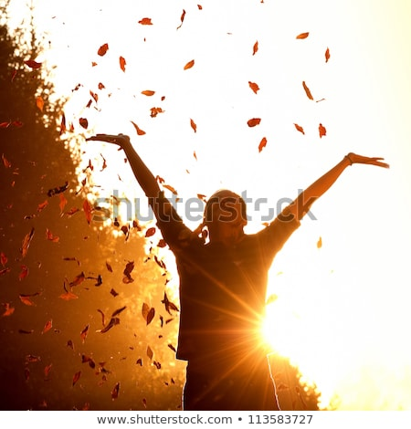 Silhouette of woman with autumn leaves  Stock photo © itmuryn