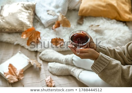 ősz · otthon · kilátás · levelek · ház · kert - stock fotó © kimmit