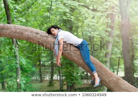спящий дерево Сток-фото © MichalEyal