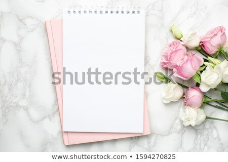 Beautiful roses stock photo © natika
