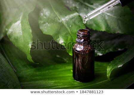 Herbal drop from a dropper Stock photo © bdspn