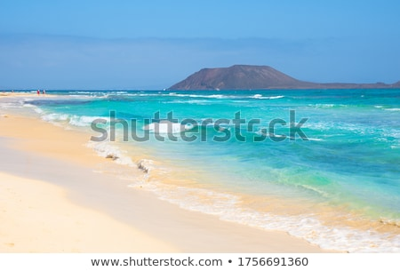 natural park of dunes of corralejo in fuerteventura spain stock photo © nito