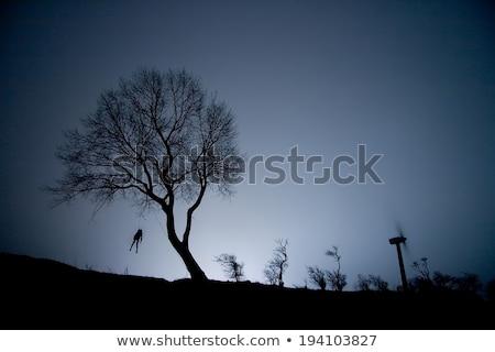 Enforcamento morte suicídio branco crime objeto Foto stock © bdspn