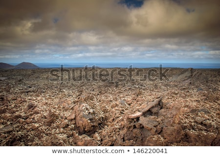 бесплодный · пейзаж · горизонте · высушите · почвы · грязи - Сток-фото © eleaner