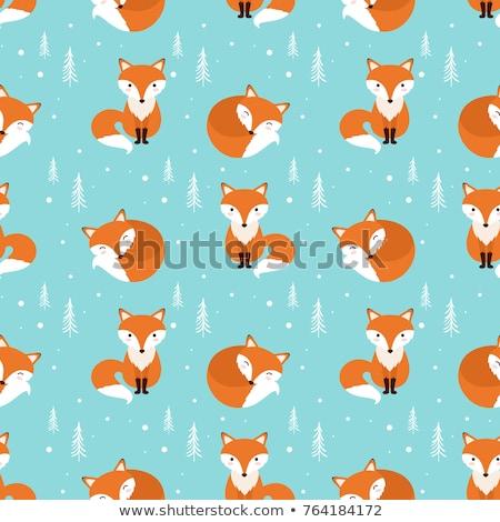 funny fox pattern stock photo © frescomovie