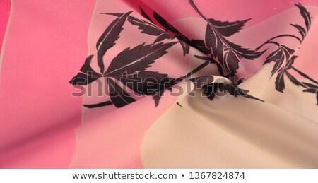 brown satin panties stock photo © ruslanomega