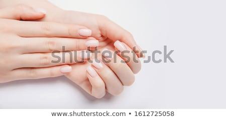 Nő kezek francia manikűr gyönyörű nő fény szürke Stock fotó © svetography