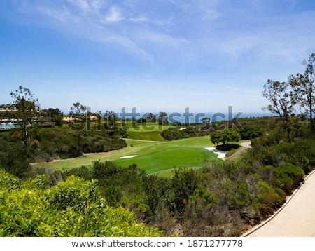 Golf sahası dağ golf Stok fotoğraf © kraskoff