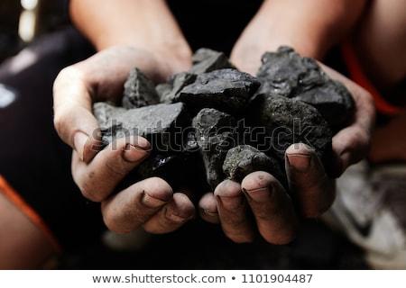 miner holding coal in hands stock photo © rastudio