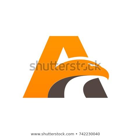 орел · шаблон · птица · вектора · искусства · иллюстрация - Сток-фото © vector1st