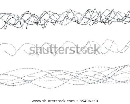 Barbed Wire elements 3 Stock photo © PokerMan