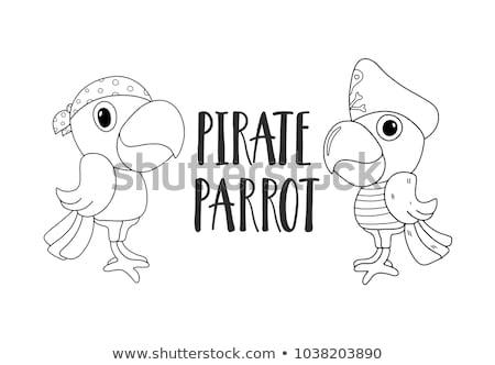 pirate black and white icon set stock photo © winner